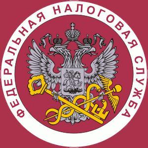 Налоговые инспекции, службы Чамзинки