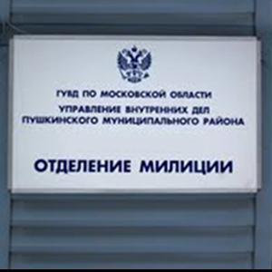 Отделения полиции Чамзинки